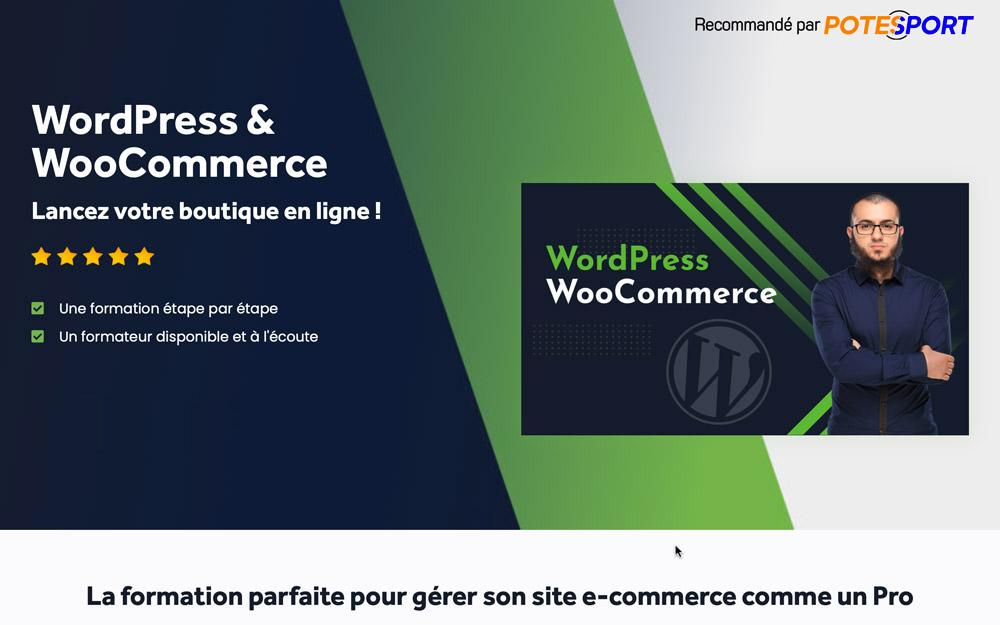 La référence WP Woocommerce
